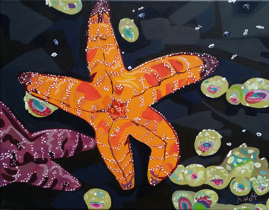 """Low Tide Stars"" acrylic painting of sea stars and anemones on dark rock by April Hoff. filename: lowtidestarsWeb"